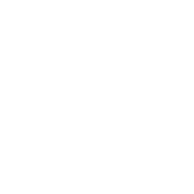 Nintendo New York - Where Everyone Comes To Play - Established 1889